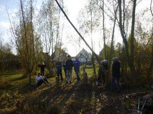 Der WPK-Wald-10 im Schulgarten