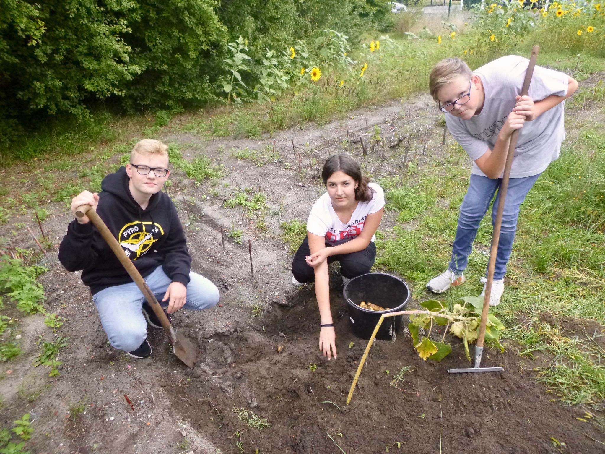 Lernen und Gärtnern im Schulgarten