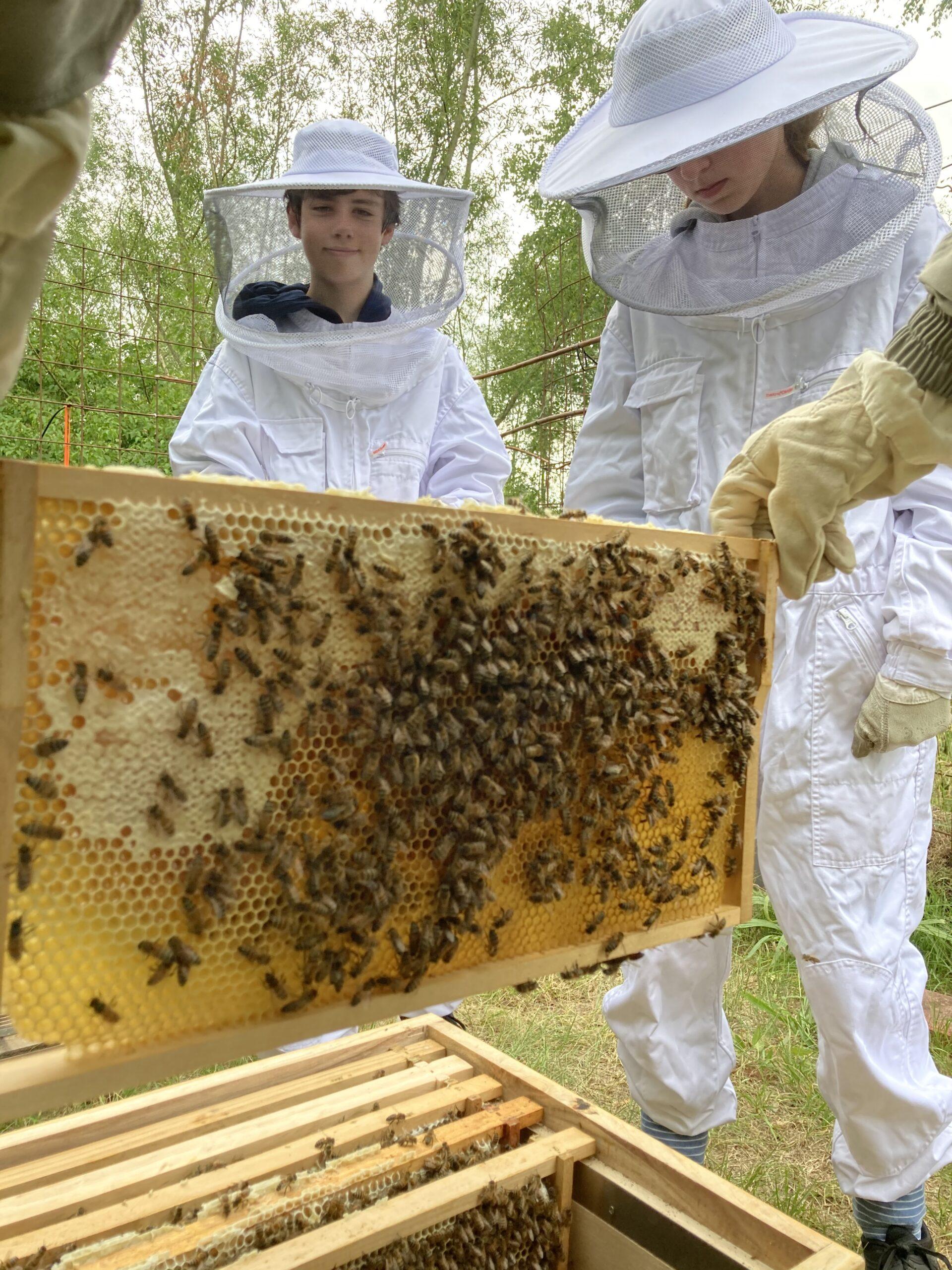 Gartentag für Bienenpaten